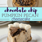 slice of pumpkin chocolate chip cheesecake on white plate