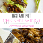 chicken wings with sticky sauce