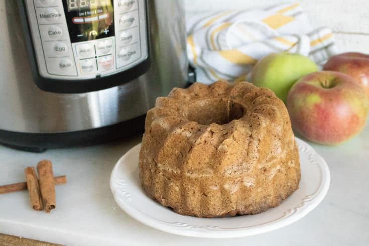 Instant Pot Applesauce Cake