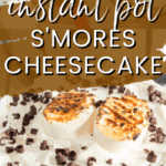 smores cheesecake with toasted marshmallows on top