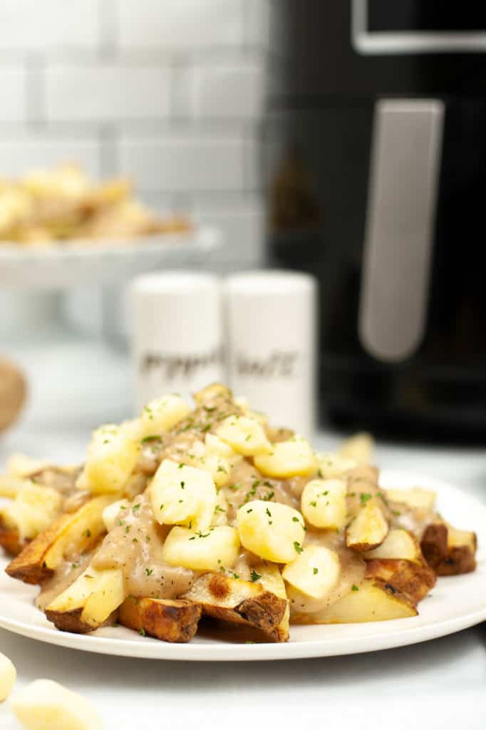 air fryer fries with gravy on plate