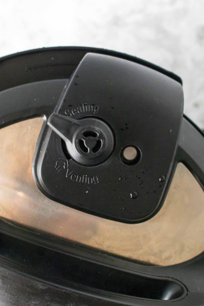 sealing valve on instant pot
